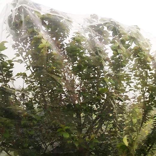 Red de protección vegetal - 2x10m Red de prevención de insectos ...