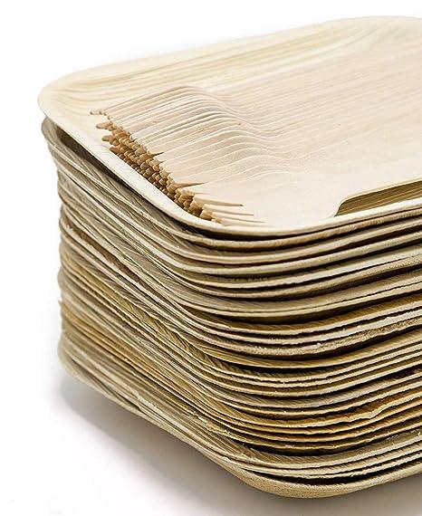 Amazon.com: ECO friendly – Juego de platos de vajilla de 75 ...