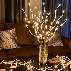 EAMBRITE Lighted White Branches 30IN 60LT Natural Willow Branch Plug in for Home Party Wedding Holiday Decoration Indoor Outdoor Use(Vase Excluded)