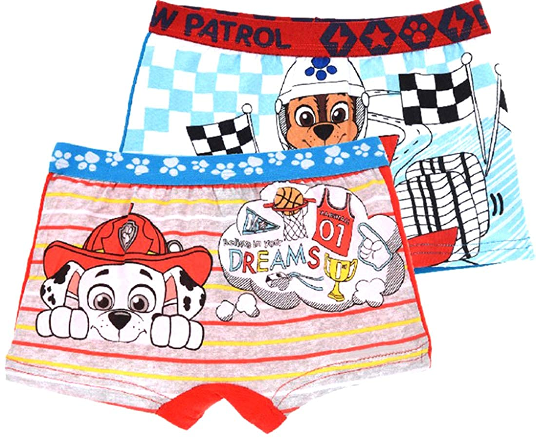 Nickelodean Official Boys Character Cartoon Superhero Boxer Shorts Underwear Trunks Ages 2+