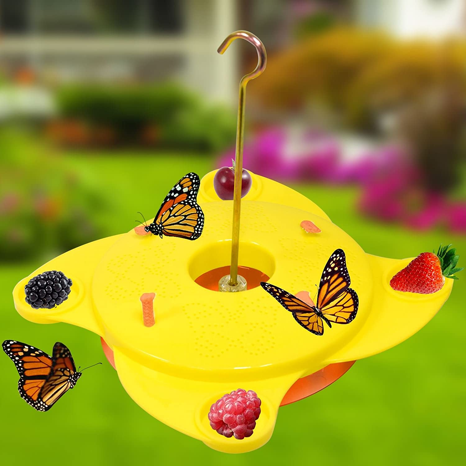 Garden Butterfly Feeder Station Brightly Coloured Yellow Insect Feeding Platform Attract Nectar Blooming Flowers ASAB