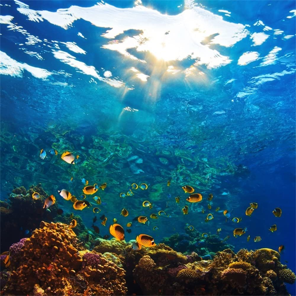 Underwater Seabed World Backdrops 5x3ft Polyester Photography Background Coral Fish Undersea Sunray Light Sea Level Island Summer Tropical Holiday Background Studio Props