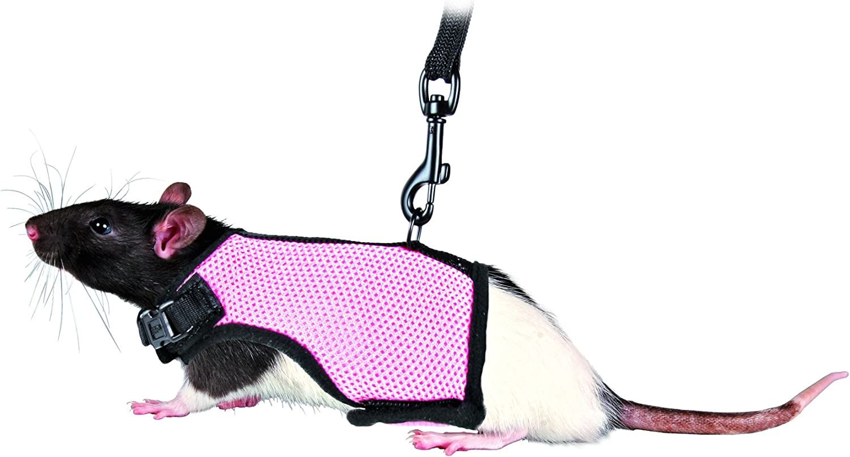 TRIXIE Arnés suave correa, Ratas, 12-18 cm, 1.20 m, Pequeños Mamíferos