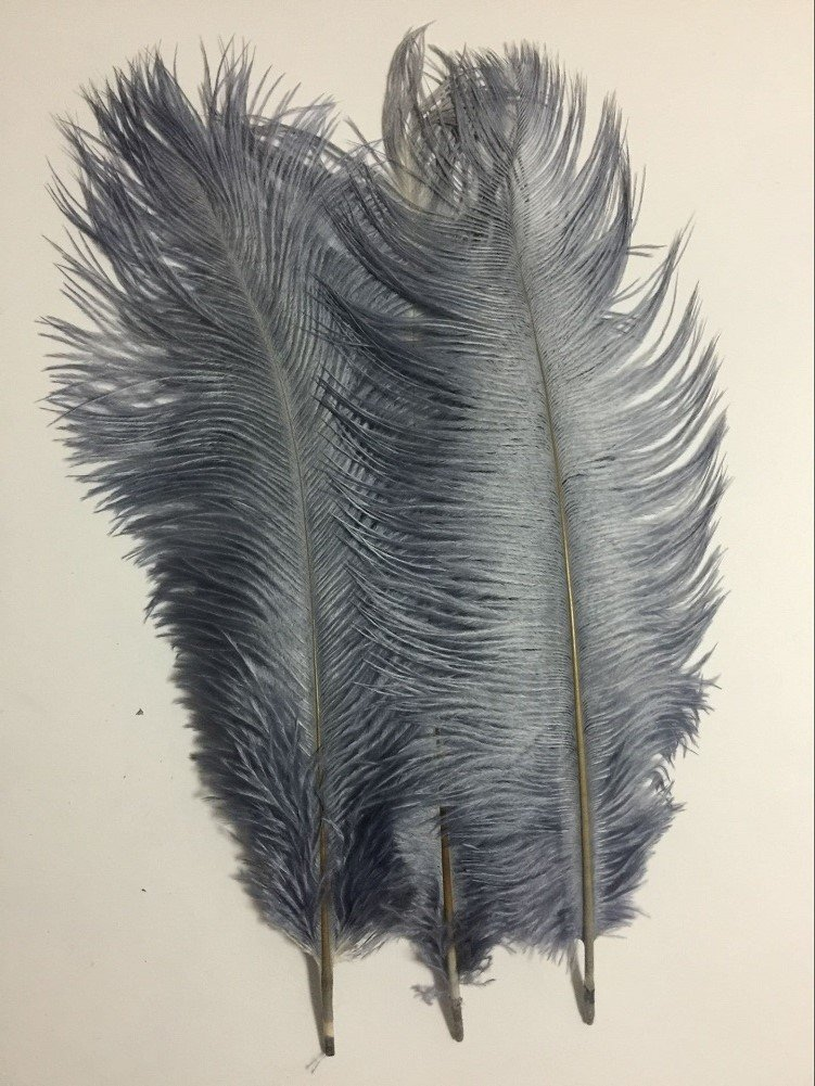KOLIGHT20pcs Ostrich Feather Gray 12''-14'' Natural Feathers Wedding, Party ,Home ,Hairs Decoration