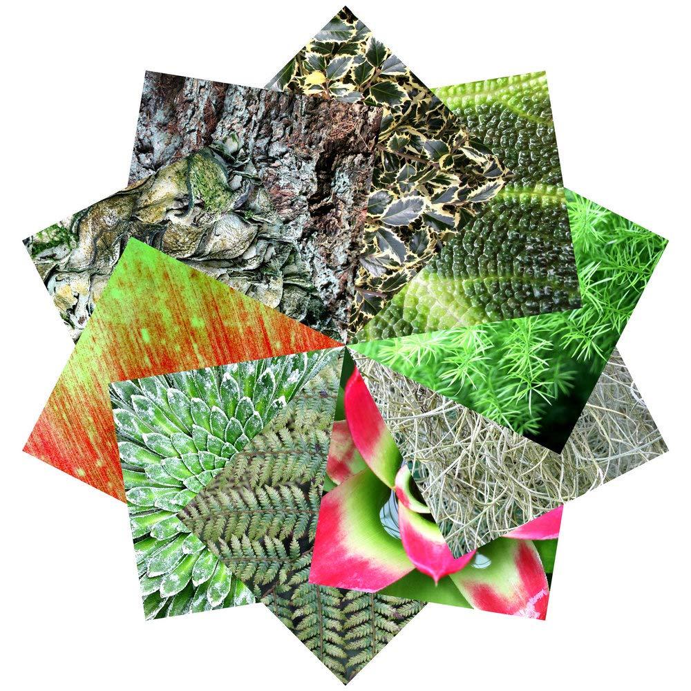 Set Regalo di Carta per Origami | 100 Fogli, 15cm Quadrati | Motivi Floreali (collezione due) folded square