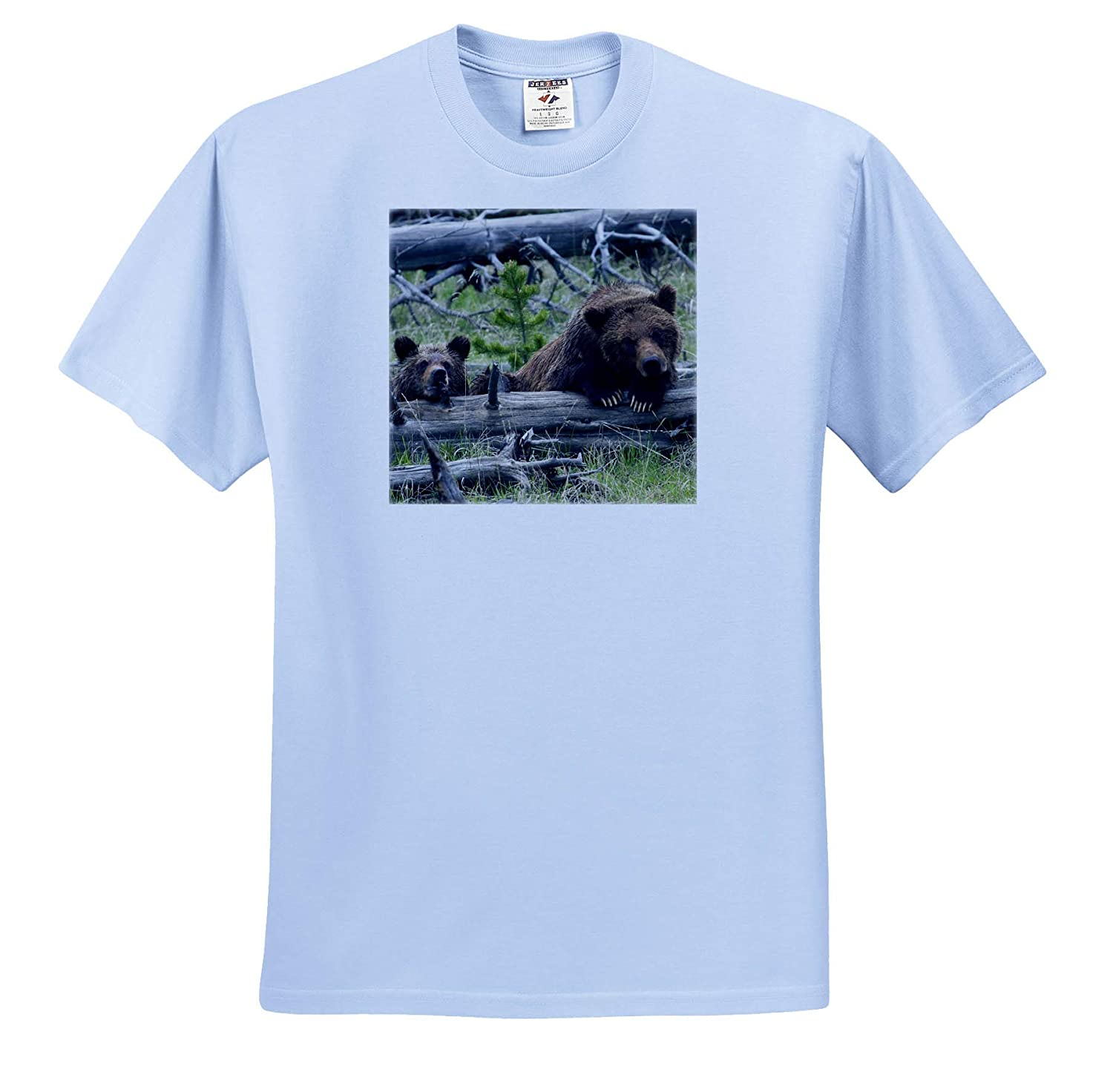 Grizzly Bear Sow and Cub ts/_313990 Adult T-Shirt XL Bears 3dRose Danita Delimont