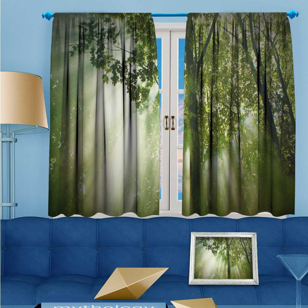 SCOCICI1588 2 Panel Curtains The sun that breaks through the woods Linen Window Curtains Rod Pocket Top W104'' x L84'' Pair