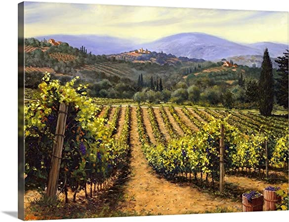 Vineyards Of Tuscany D Italy Art Print Home Decor Wall Art Poster
