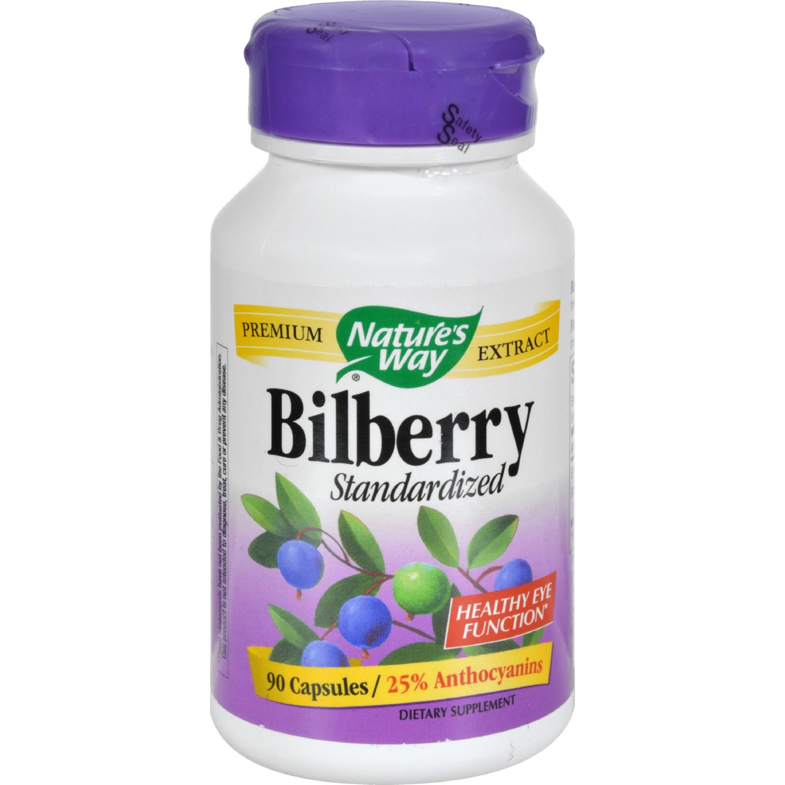 2Pack! Nature's Way Bilberry Standardized - 80 mg - 90 Capsules