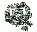 NAVA CHIANGMAI 50 Pcs Cherry Blossom Grey Mulberry