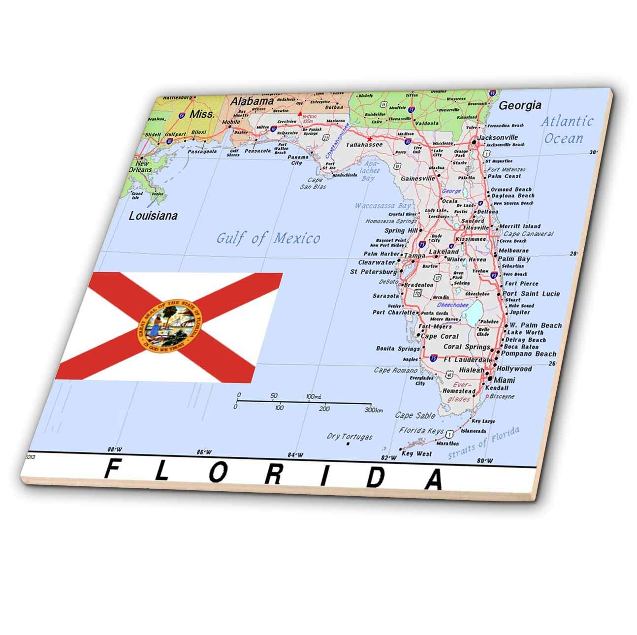 Amazon.com: 3dRose Topo Maps and Flags Of States - Image of Florida ...