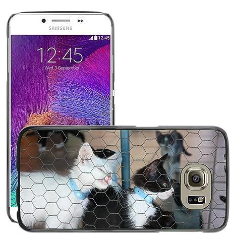 Just carcasa caliente estilo teléfono celular PC Funda rígida//m00139743 Caseta de gato gatos
