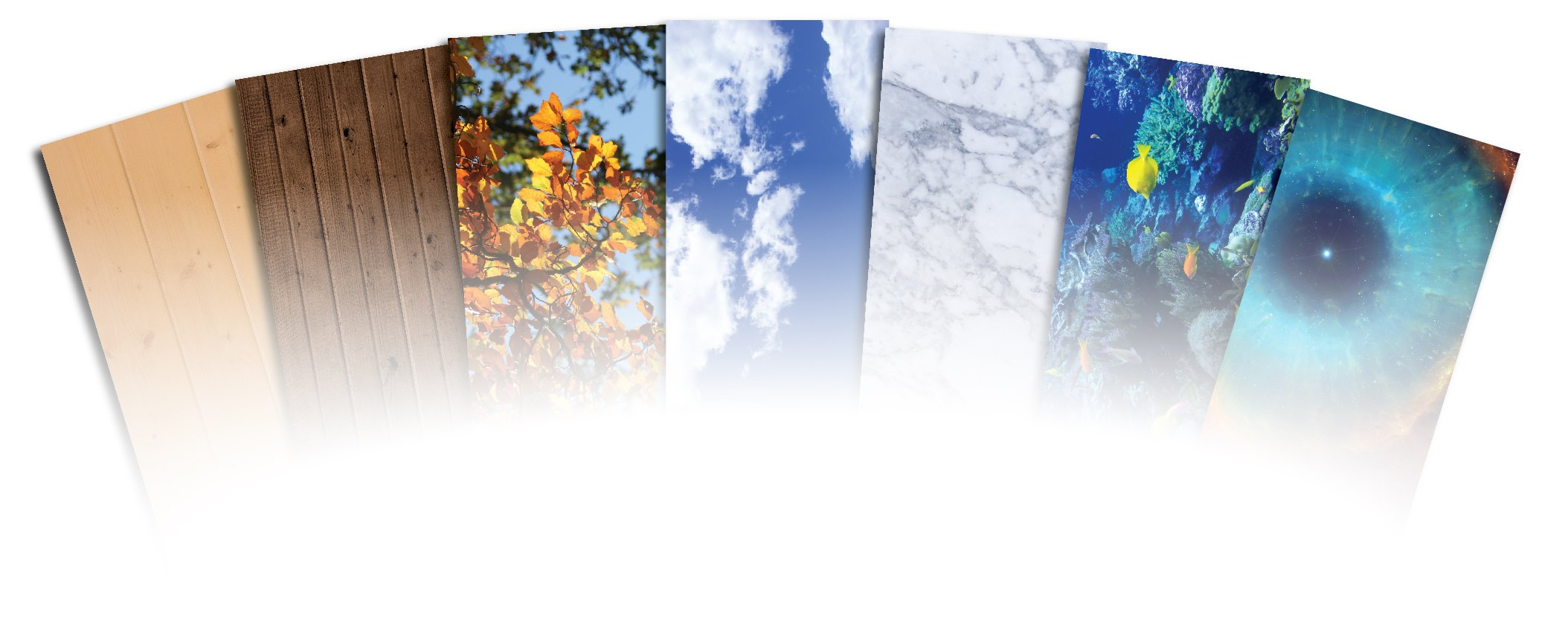 Ceiling Tile Skin - Forest Canopy 2 Kit 2x4 Grid Glue Up Decorative Panel Cover Wrap (6pc Long)