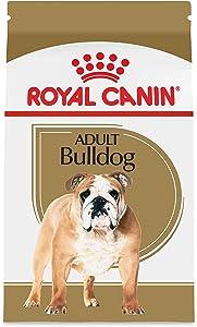 Royal Canin Breed Health Nutrition Bulldog Adult Dry Dog Food