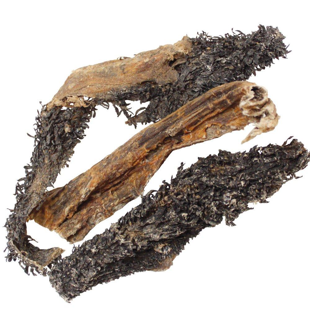 dogreform Panse rinderpansen Vert naturel pour le chien getrocknet les gehaltvolle proteinreiche Tripes un fournisseur de minéraux et non négligeable insertions Schecker