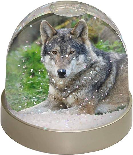 9,2/x 9,2/x 8/cm Mehrfarbig Advanta Iltis Frettchen Foto Snow Globe Schneekugel Strumpff/üller Geschenk