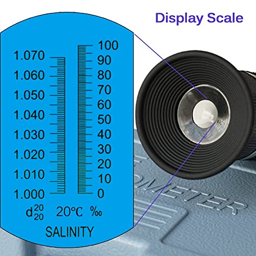 Display scale