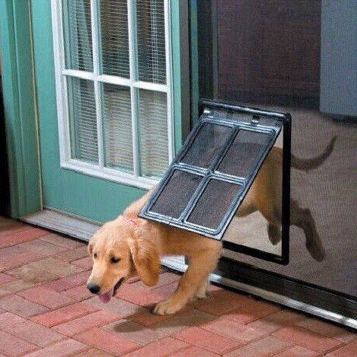HITSAN Dog Cat Pet Large Screen Door 2-Way Flap Lock Gate Way for Window Security Black One Piece