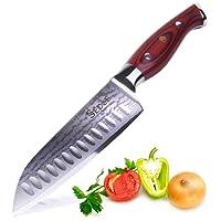 SEDGE Couteaux de Cuisine Acier Inoxydable & VG-10 Japonais Acier de Damas & La Poignée Ergonomique