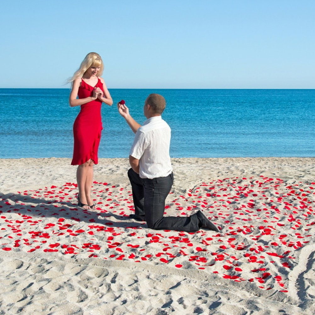 Decorazioni di San Valentino Proposta di Matrimonio 3000pcs Petali di Rosa Petali di Rosa Rossa in Seta per Decorazione di Matrimonio