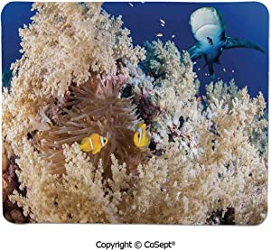 """Non-Slip Rubber Base Mousepad,Reef with Little Clown Fish and Sharks East Egyptian Red Sea Life Scenery,Water-Resistant,Non-Slip Base,Ideal for Gaming (11.81"""" x 27.55""""),Blue Cream"""