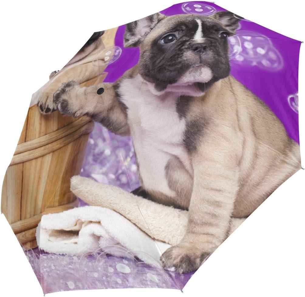 DOENR Bubble Dog Compact Travel Umbrella Sun and Rain Auto Open Close Umbrellas Windproof UV Protection Umbrella