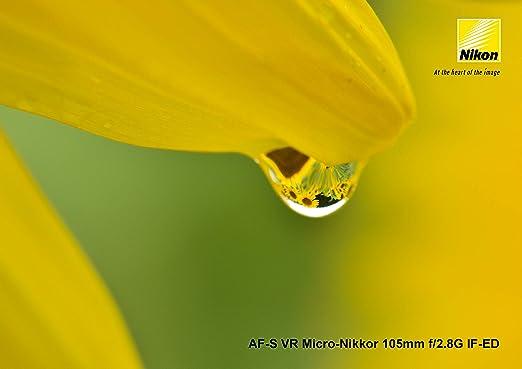 Nikon Af S Vr Micro Nikkor 105mm F 2 8g If Ed Lens Kamera