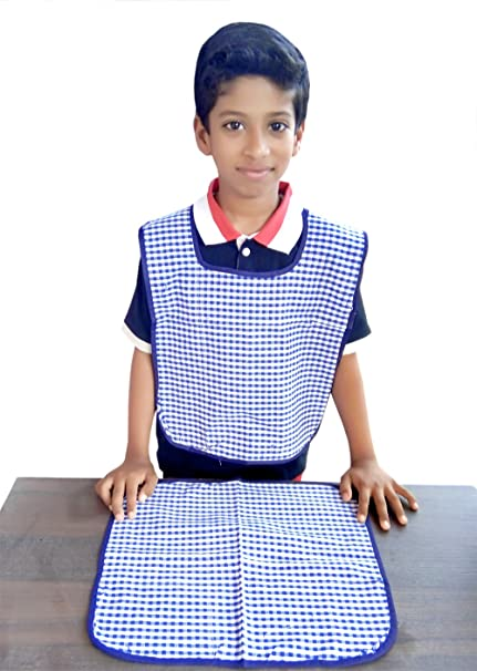 Switchon Waterproof Cotton Checks Design Multi Purpose Apron with Cloth Plate for Kids - Blue and White