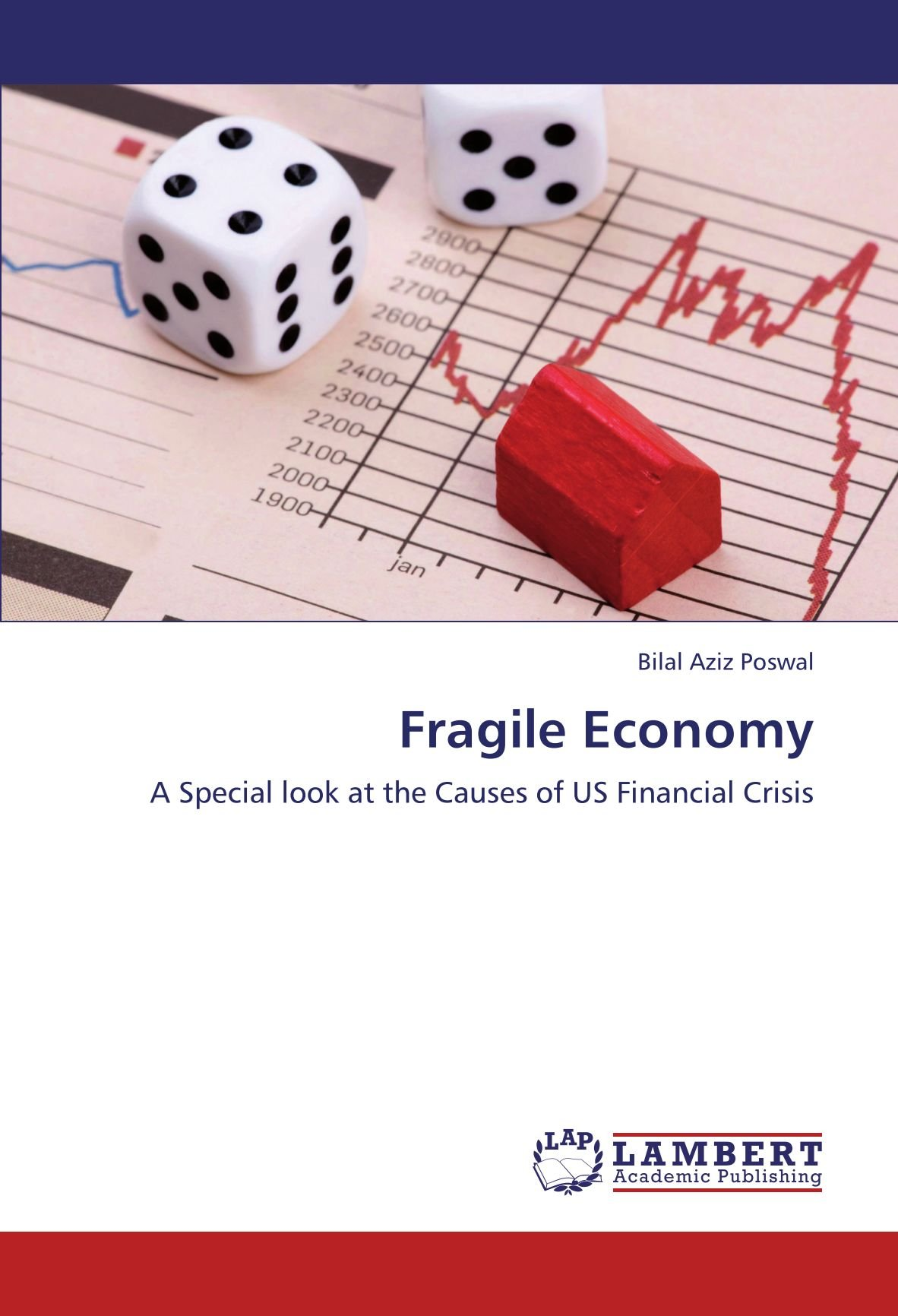 Fragile Economy: A Special look at the Causes of US Financial Crisis pdf epub