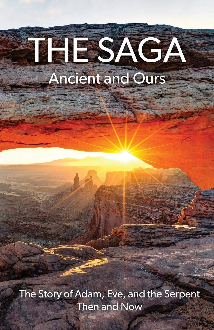 Download The Saga: Ancient and Ours PDF