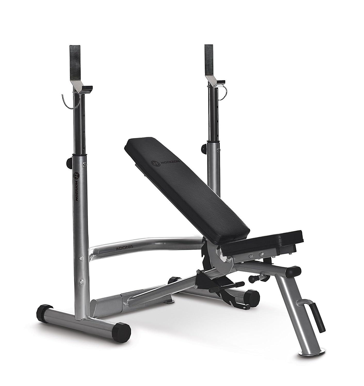 Horizon Fitness Adonis Plus Hantelbank mit Ablage: Amazon.de: Sport ...