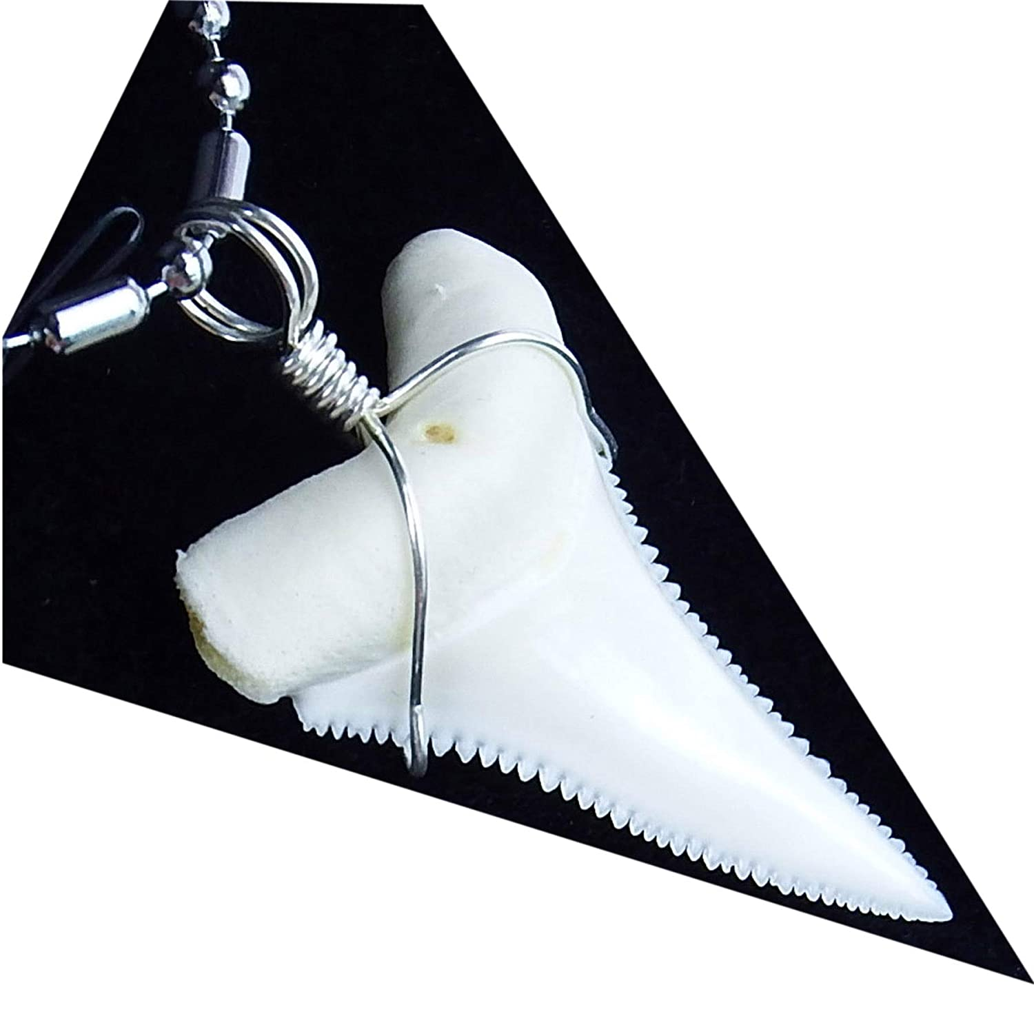 GemShark Real Shark Tooth Necklace Great White for Boy Men Sterling Silver Wrapped Charm Pendant