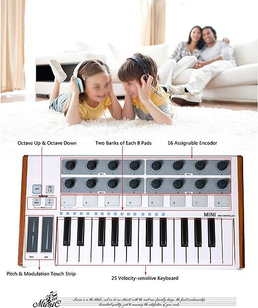 LIERSI Ultra Portable 25 Key Musical Keyboard Synthesizer ...