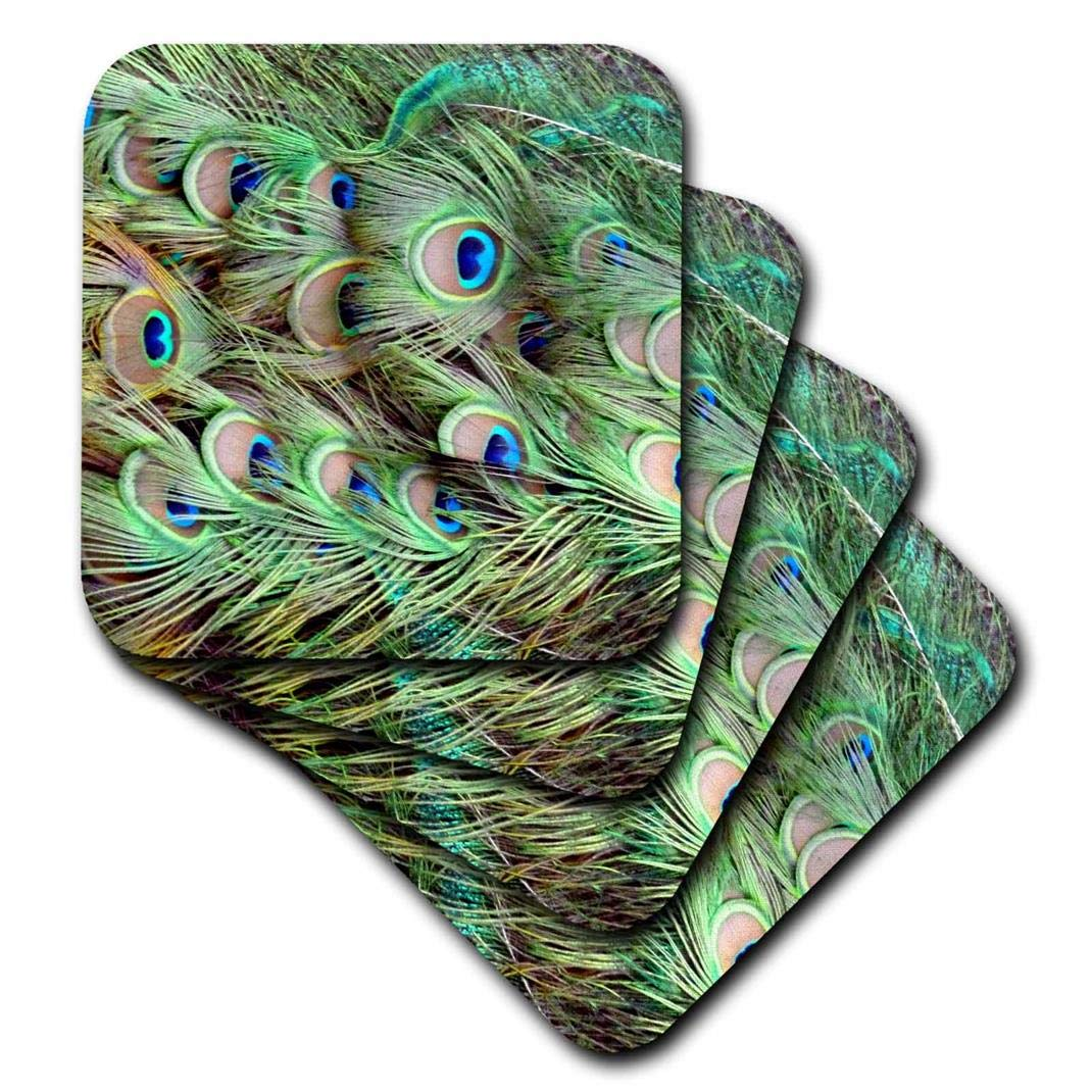 Set of 4 3dRose cst/_156169/_1 Peacock Tail Feathers Eyes-Soft Coasters