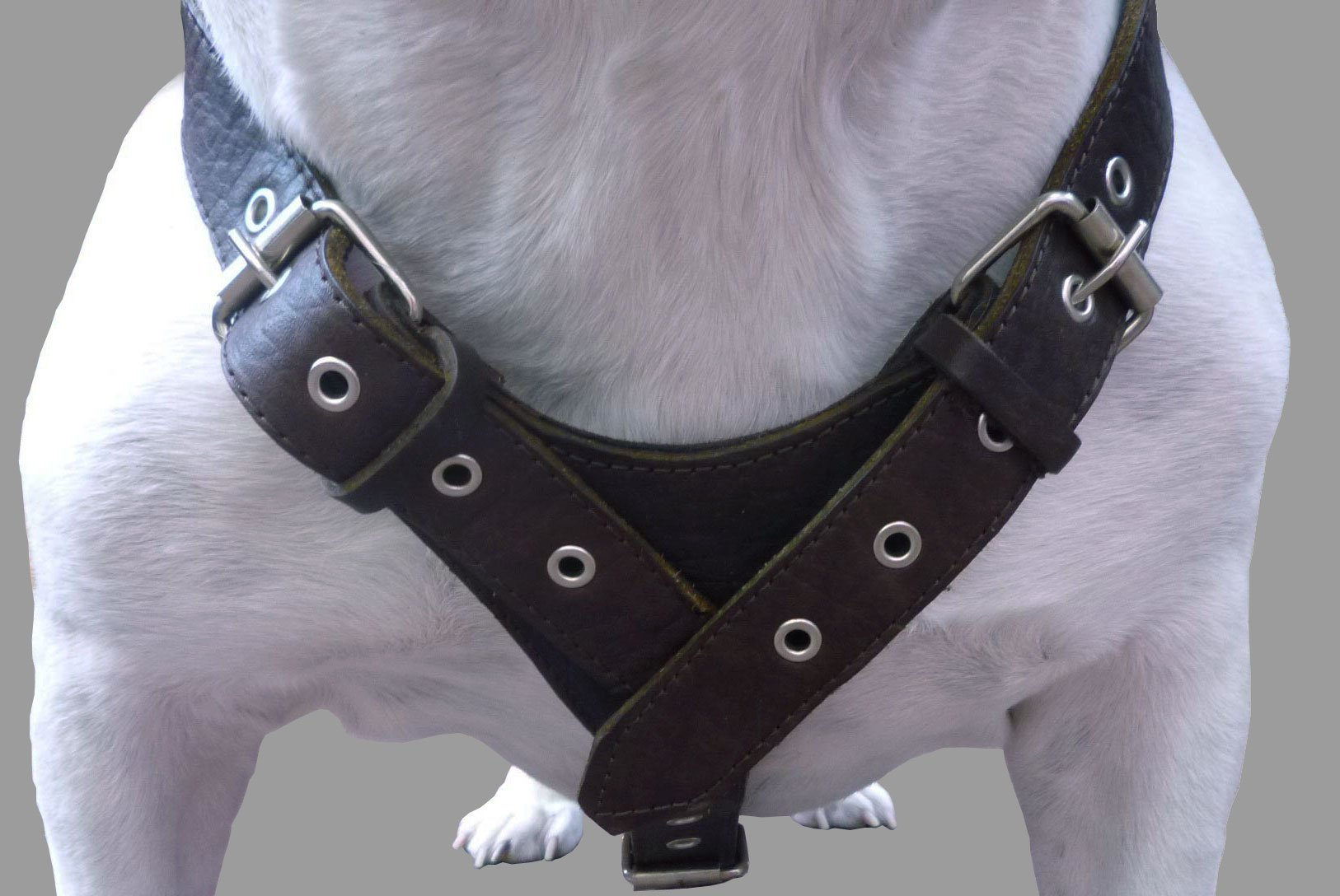 10 Lbs Brown Genuine Leather Weighted Pulling Dog Harness for Exercise and Training. Fits 35''-44'' Chest by Dogs My Love (Image #3)