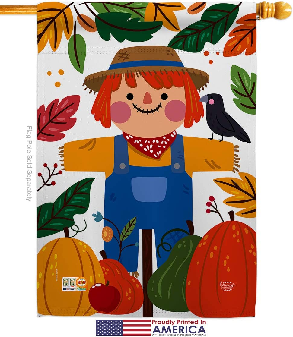 Amazon Com Ornament Collection H192135 P3 Sweetie Scarecrow Fall Harvest Autumn Impressions Decorative Vertical 28 X 40 House Flag Printed In Usa Multi Color Garden Outdoor