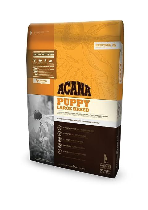 Acana Puppy Large Breed comida para perros 11,4 Kg