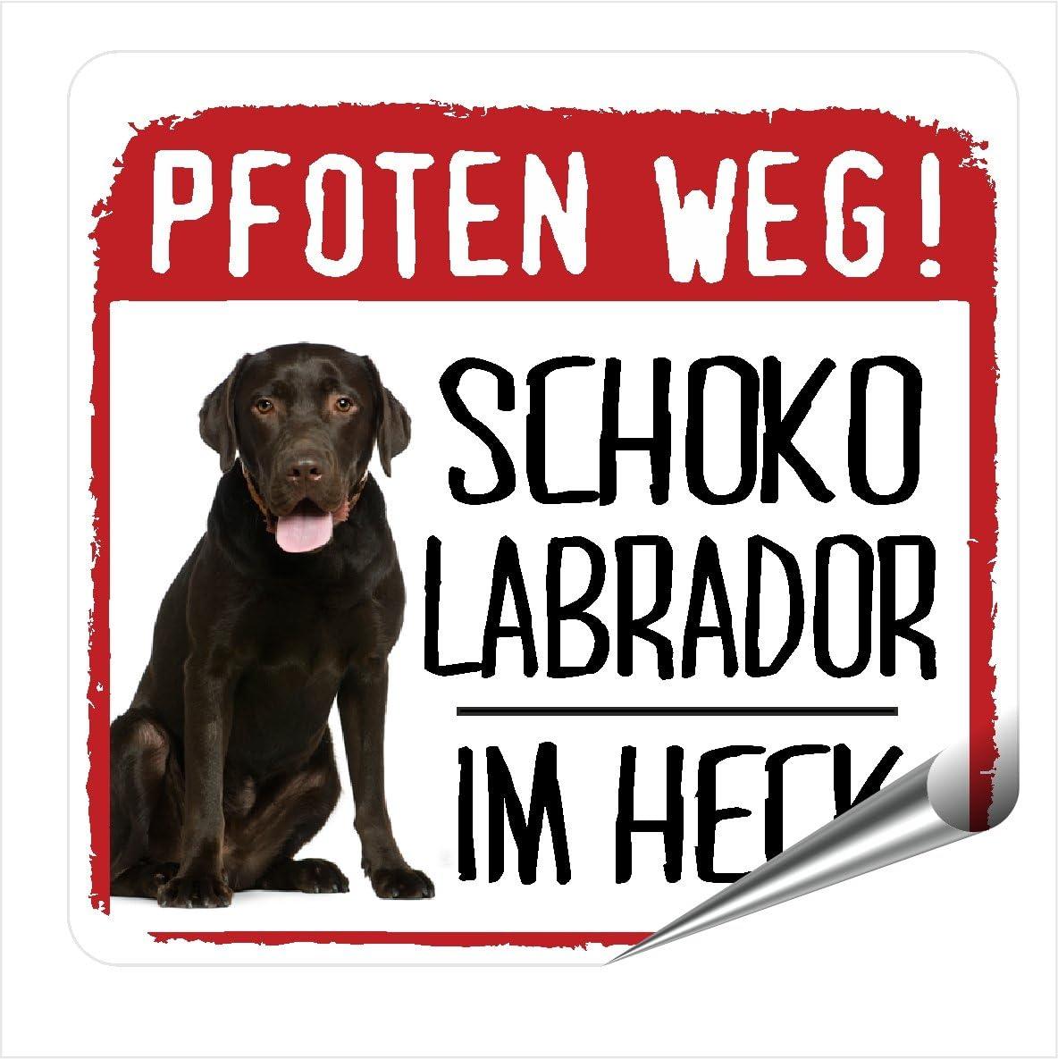 Siviwonder Auto Aufkleber Schoko Labrador Pfoten Weg Hundeaufkleber Reflektierend Reflective Auto