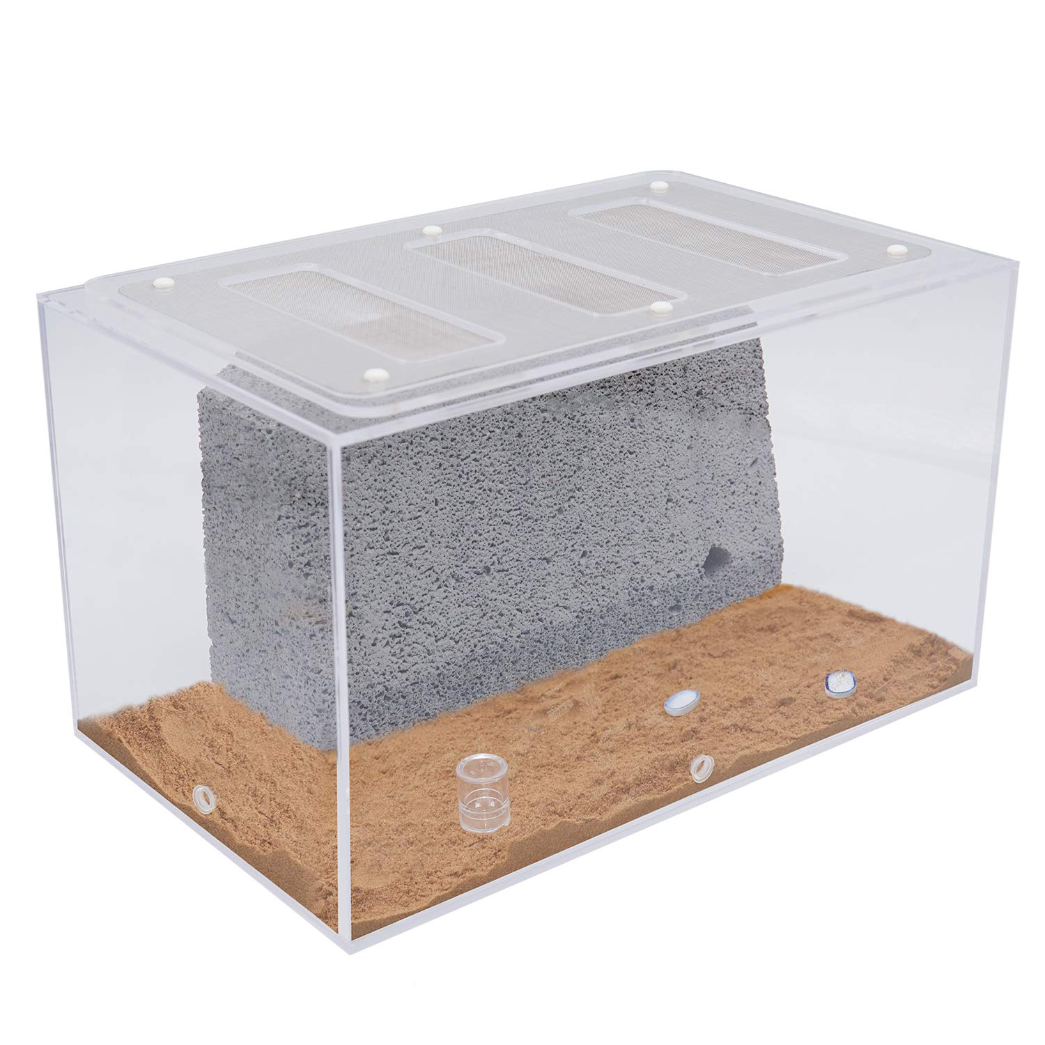 INNOLIFE Ant Castle Big Ants Farm with Ant Nest Rockery Formicarium(Model 2-Large) by INNOLIFE