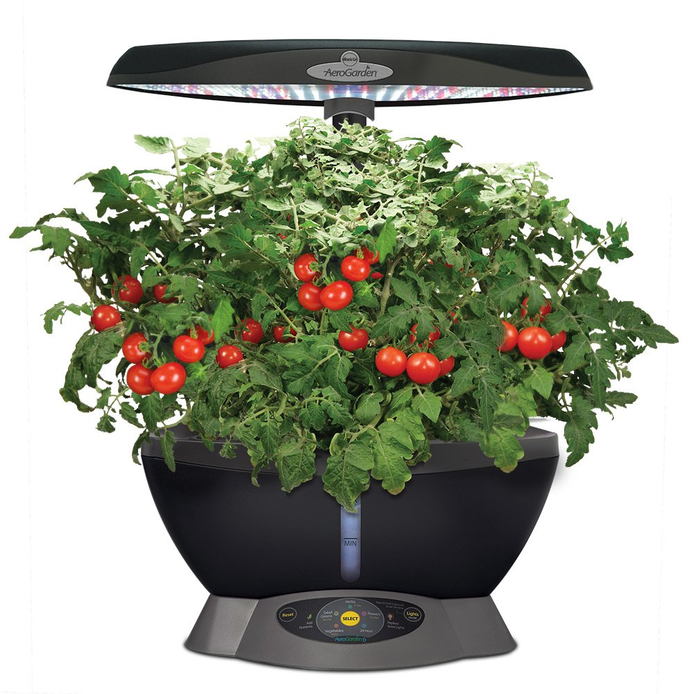 Hydroponic Kitchen Herb Garden Amazoncom Miracle Gro Aerogarden Classic 6 With Gourmet Herb