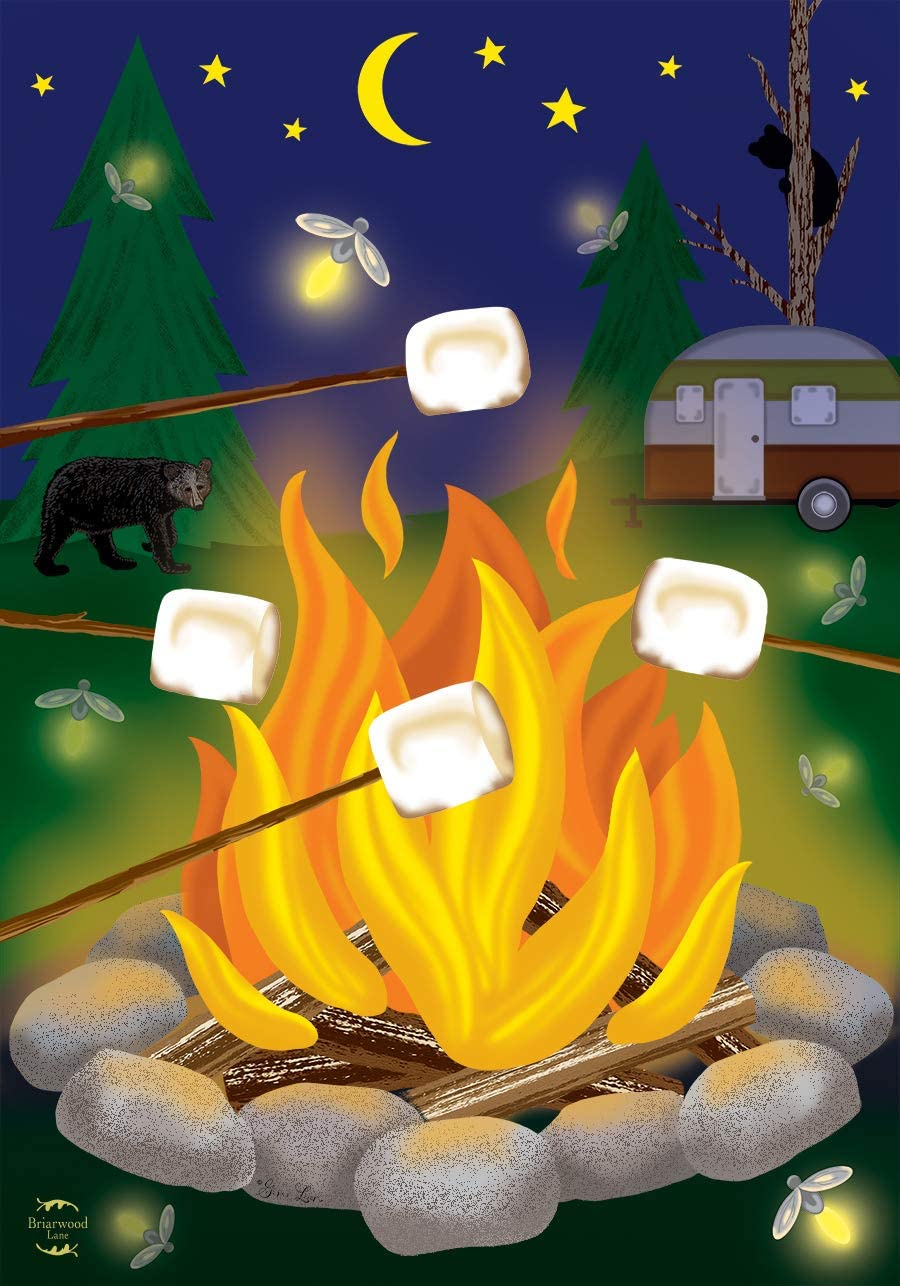 """Briarwood Lane Campfire S'Mores Summer House Flag Camping Outdoors 28"""" x 40"""""""