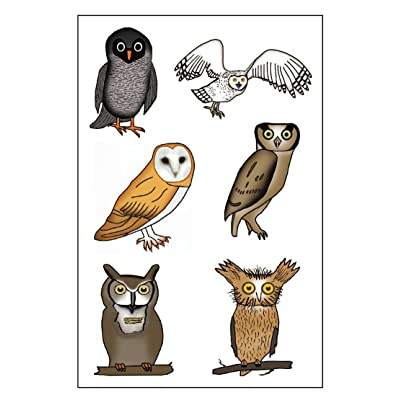 Premium Owl Temporary Tattoos, Party Favors: Health & Personal Care