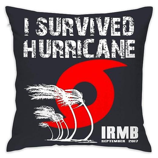 I Survived Hurricane Irma 2 0 1 7 Soft Throw Pillowcase for Car ...