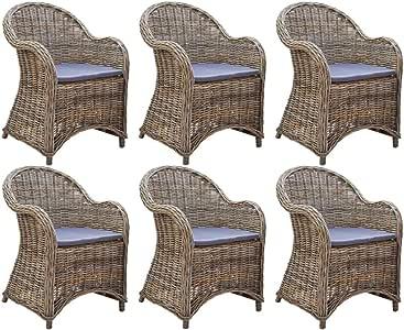 vidaXL - Juego de 6 sillas de jardín con Cojines, Resina Trenzada: Amazon.es: Hogar