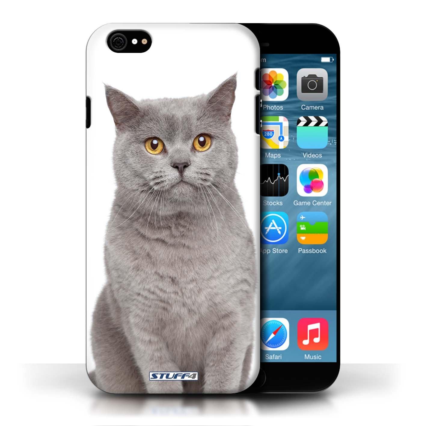 Kobalt Blu britannico stampato Custodia Cover per Apple iPhone 6/6S cellulari telefoni / Collezione Razze di gatti