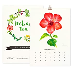 2021 A4 Herbal Tea Wall Art Calendar for Home Office, Christmas Decoration and Gift for Mother and Friends, Plants Print Featured Botanical Painting in Watercolor C9