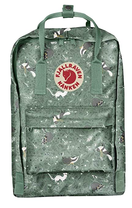 dabcf528914 Amazon.com  Fjallraven Kanken Art Special Edition Backpack
