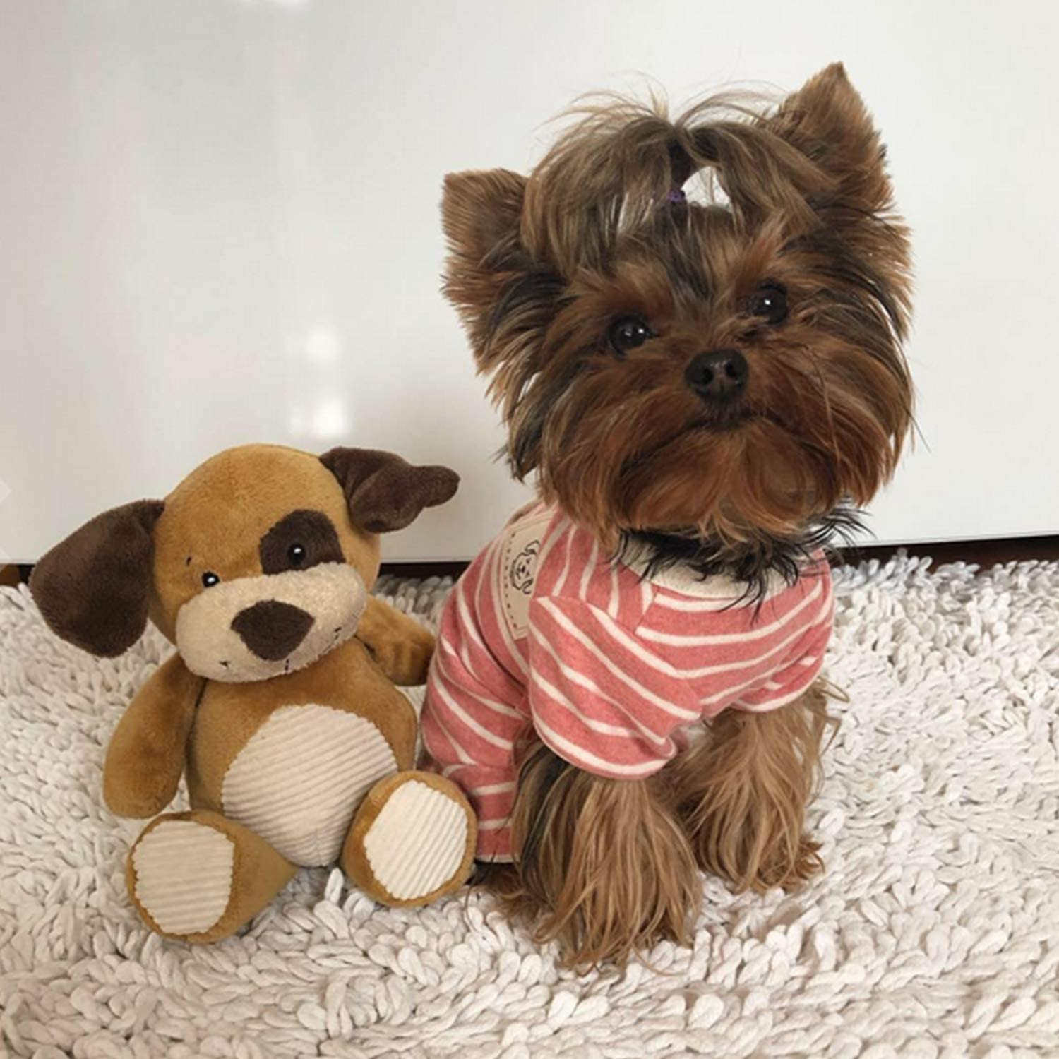 TONY HOBY Female//Male Pet Dog Pajamas Stripes 4 Legged Dog pjs Jumpsuit Soft Cotton Dog Clothes
