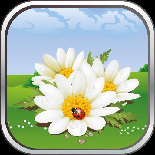 Garden Journey: Your Adventure in Flower Garden