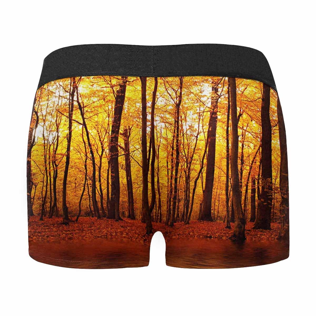 XS-3XL INTERESTPRINT Boxer Briefs Mens Underwear Lake in Autumn Forest Beautiful Nature
